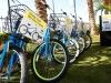 Molasky-Bikes-1002